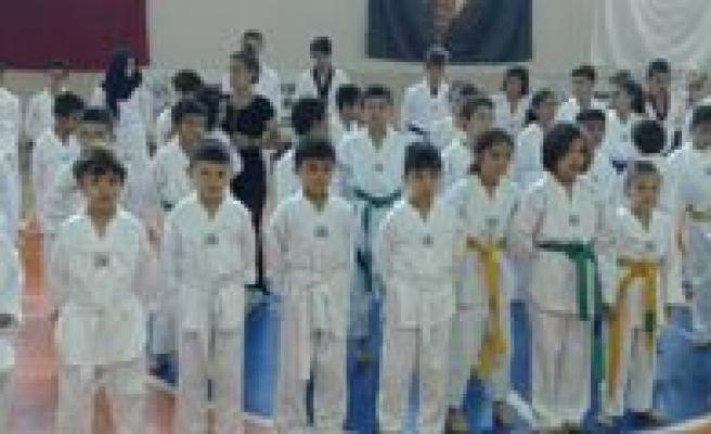 Karaman Taekwondo Sampiyon Adaylarini Ariyor
