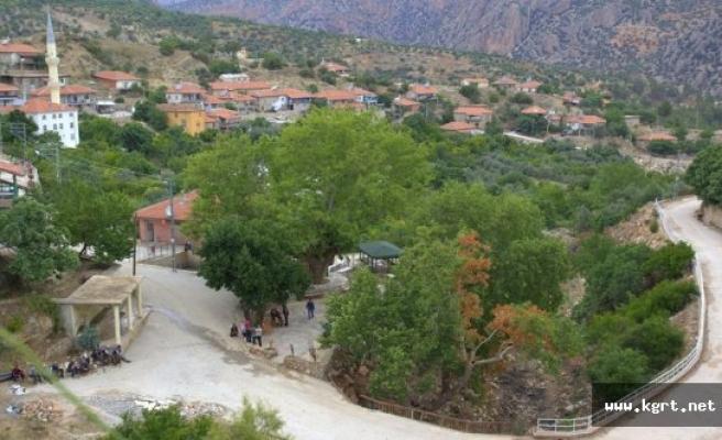 Bostanözü Koca Çınar Parkı Açıldı