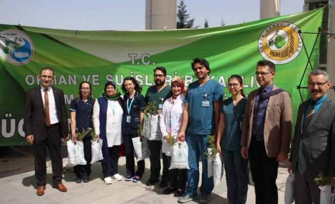 Karaman'da Orman Haftası'nda Ücretsiz Fidan Dağıtımı