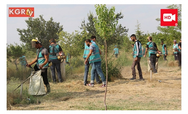 Ağaçlandırma Projesinde Konya Şeker Artık Yalnız Değil